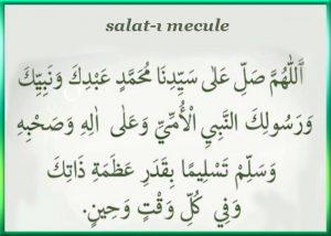 Mecule
