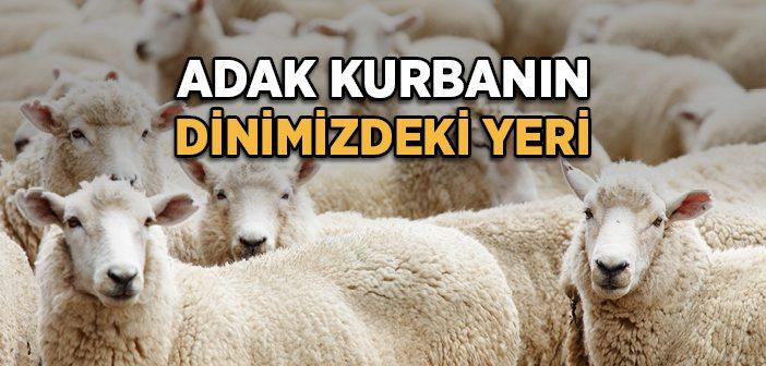 adak_kurban-702x336